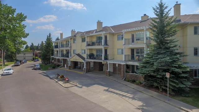 2144 Paliswood Road SW #203, Calgary, AB T2V 5K2 (#A1102927) :: Western Elite Real Estate Group