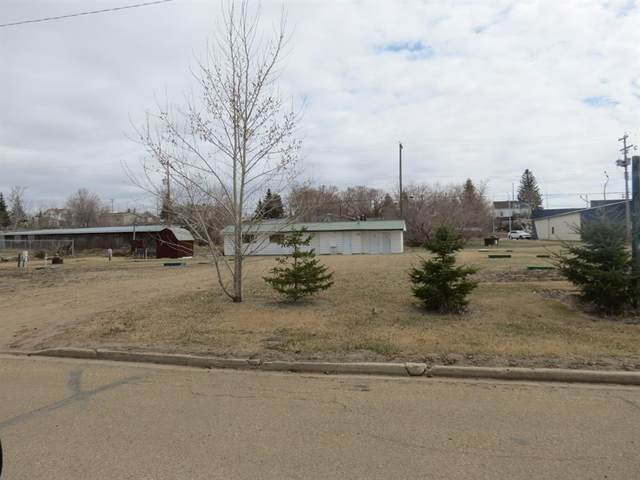 4910 48 Street, Sedgewick, AB T0B 4C0 (#A1103014) :: Redline Real Estate Group Inc