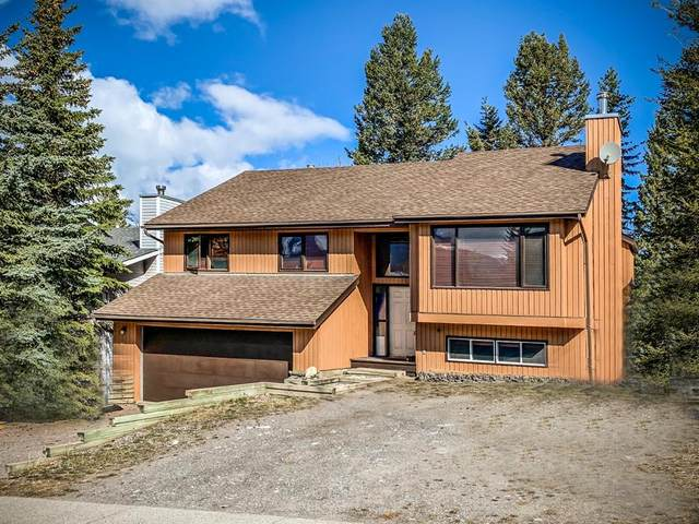 204 Trapper Rise, Canmore, AB T1W 1E5 (#A1104385) :: Canmore & Banff