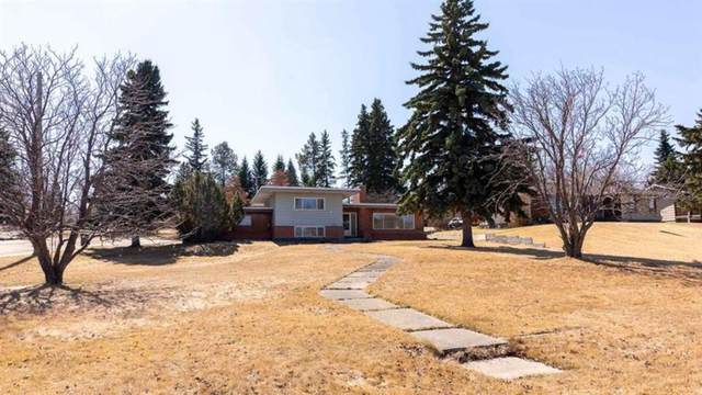 5307 48 Avenue, Sylvan Lake, AB T4S 1G6 (#A1104425) :: Western Elite Real Estate Group