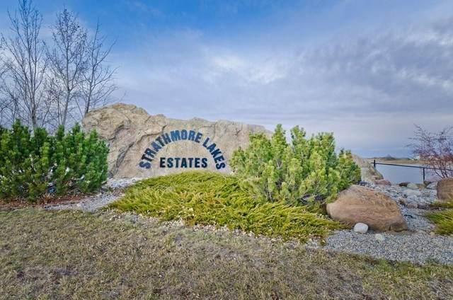 78 Lakes Estates Circle, Strathmore, AB T1P 0B6 (#A1104821) :: Calgary Homefinders