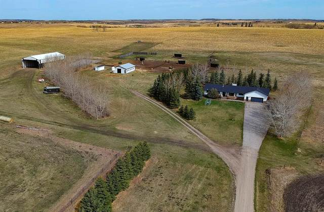 32164 Big Hill Springs Road, Rural Rocky View County, AB T4C 2Y3 (#A1105248) :: Redline Real Estate Group Inc