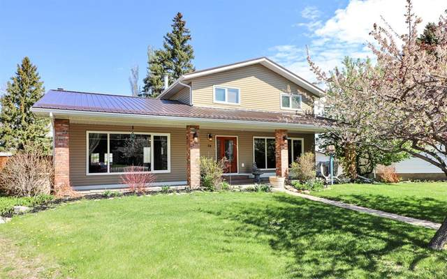 28 Coultis Court E, Brooks, AB T1R 0J8 (#A1106485) :: Western Elite Real Estate Group