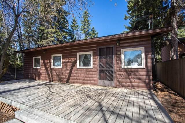 121 Oliver Avenue, Gull Lake, AB T4L 2N1 (#A1106992) :: Calgary Homefinders