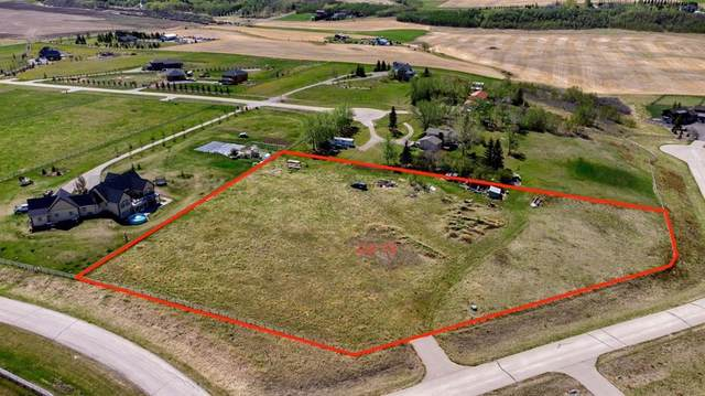 286006 Ridgeview Way E, Rural Foothills County, AB T1S 5A9 (#A1108192) :: Calgary Homefinders