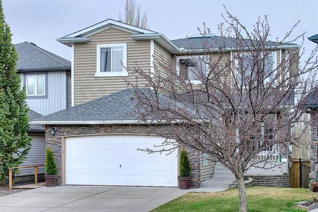179 Citadel Meadow Close NW, Calgary, AB T4G 4T4 (#A1108309) :: Canmore & Banff