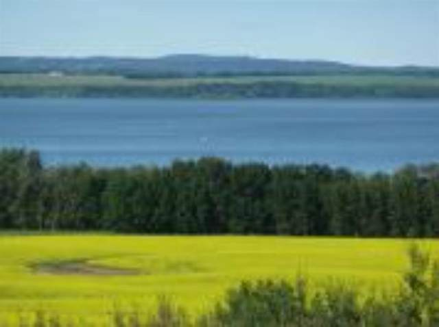 420069 Range Road 284 #12, Rural Ponoka County, AB T4J 1R3 (#A1108872) :: Calgary Homefinders