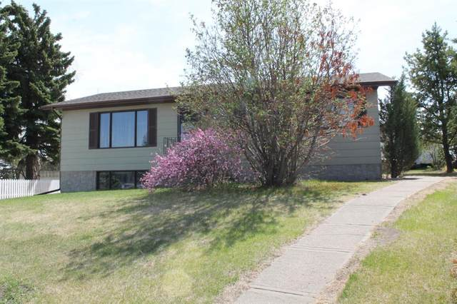 4701 52 Street, Lougheed, AB T0B 2V0 (#A1109292) :: Calgary Homefinders