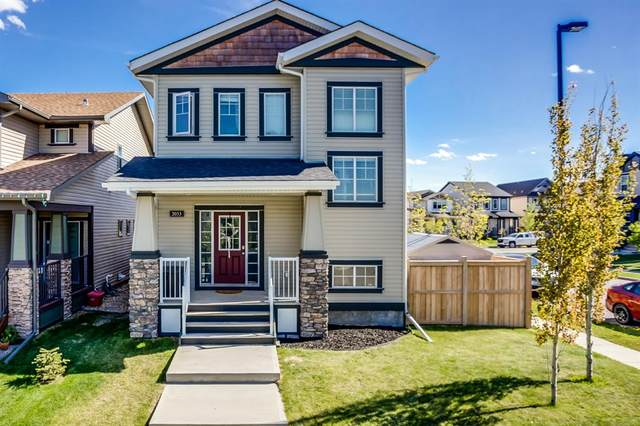 2033 Reunion Link NW, Airdrie, AB T4B 0Z5 (#A1109485) :: Calgary Homefinders
