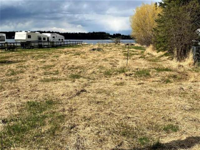 308 Lakeshore Drive, Rural Wetaskiwin County, AB T0C 0T0 (#A1110617) :: Calgary Homefinders