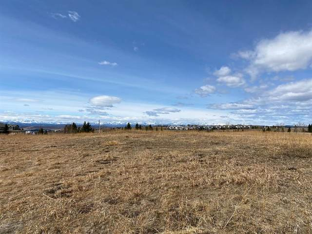 260193 Mountain Ridge Place, Rural Rocky View County, AB T4C 2Y1 (#A1111535) :: Calgary Homefinders