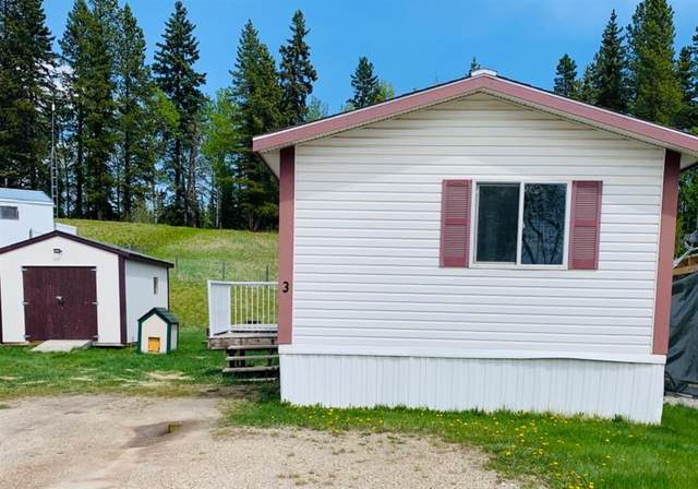 9 Pinewood Drive #3, Rural Clearwater County, AB T4T 1A4 (#A1112934) :: Calgary Homefinders