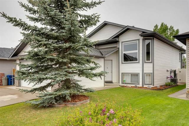 18 Springs Crescent SE, Airdrie, AB T4A 2C2 (#A1113218) :: Calgary Homefinders