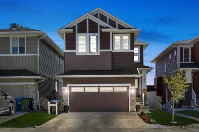 154 Red Sky Green NE, Calgary, AB T3N 0V6 (#A1113628) :: Calgary Homefinders