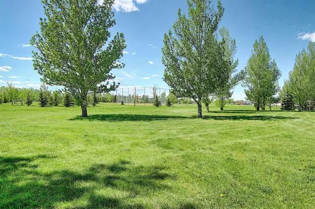 211 Hampstead Circle NW, Calgary, AB T3A 5P3 (#A1114233) :: Calgary Homefinders