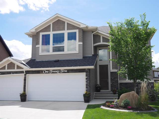 125 Rainbow Falls Bay, Chestermere, AB T1X 0S5 (#A1114493) :: Calgary Homefinders