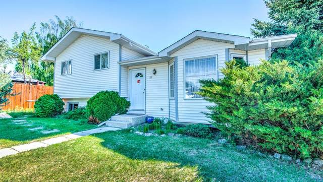 10 Green Meadow Place, Strathmore, AB T1P 1H3 (#A1115113) :: Calgary Homefinders