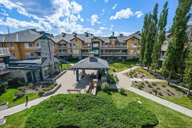25 Richard Place SW #320, Calgary, AB T3E 7N1 (#A1115963) :: Calgary Homefinders