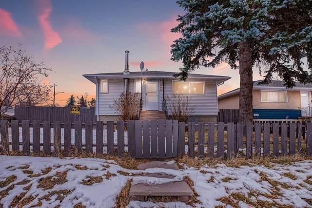 7604 24 Street SE, Calgary, AB T2C 0Y8 (#A1116470) :: Calgary Homefinders