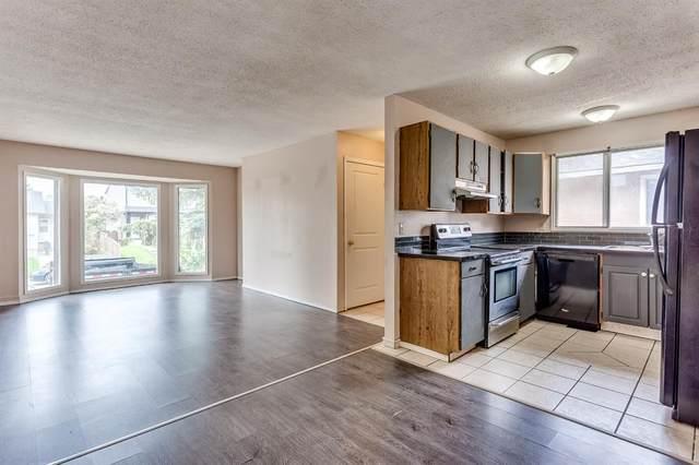 16 Falconridge Place NE, Calgary, AB T3J 1A6 (#A1116819) :: Calgary Homefinders