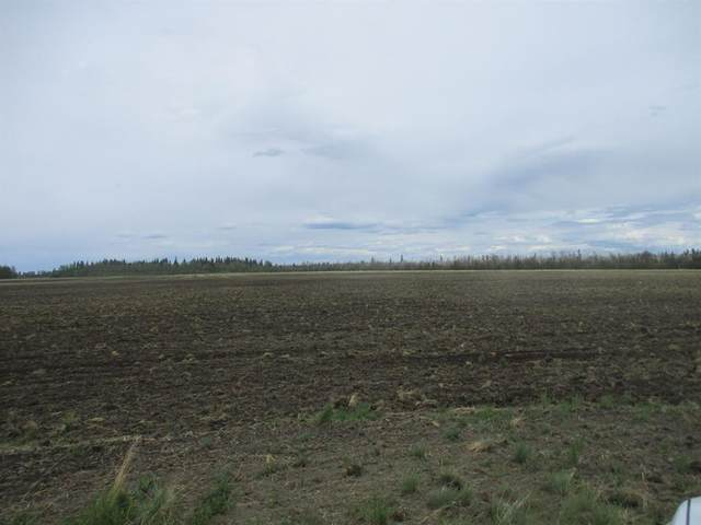 RR Deadwood Drive, Rural Northern Lights M.D., AB T0H 2M0 (#A1117089) :: Greater Calgary Real Estate