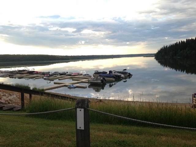 25054 South Pine Lake Road #5009, Rural Red Deer County, AB T0M 1R0 (#A1117114) :: Calgary Homefinders