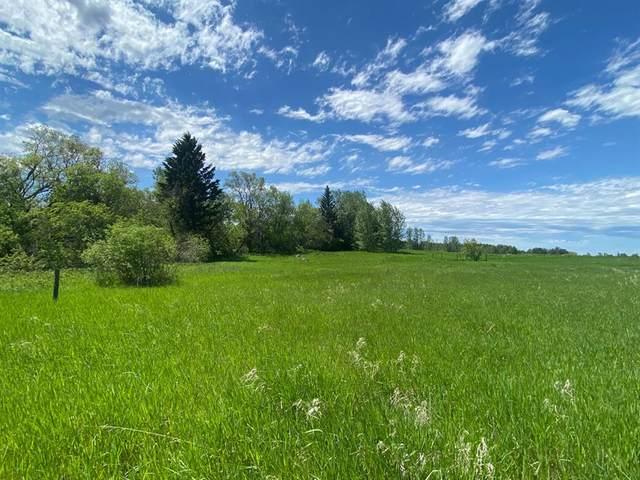431046 Range Road 253, Rural Ponoka County, AB T4J 1R1 (#A1117675) :: Greater Calgary Real Estate