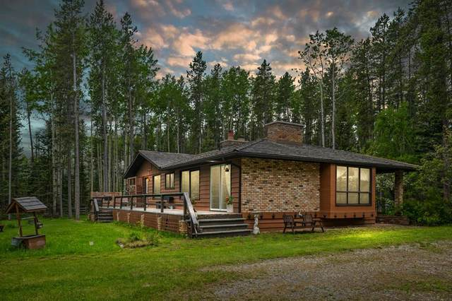336235 Leisure Lake Drive W, Rural Foothills County, AB T0L 1W2 (#A1117903) :: Calgary Homefinders