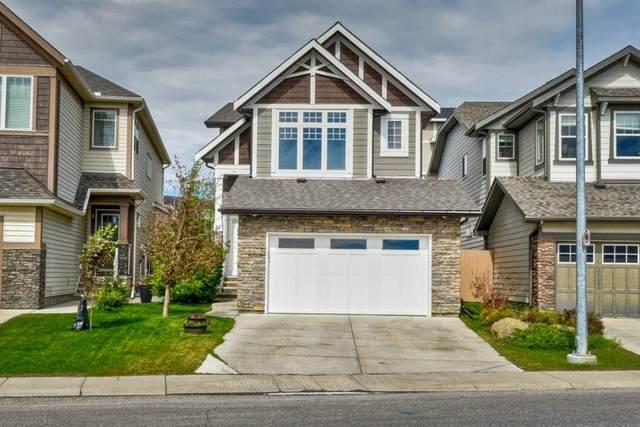 32 Skyview Springs Gardens NE, Calgary, AB T3N 0B1 (#A1118652) :: Greater Calgary Real Estate