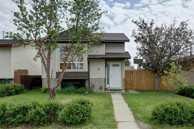 75 Falchurch Crescent NE, Calgary, AB T3J 1J9 (#A1119048) :: Calgary Homefinders