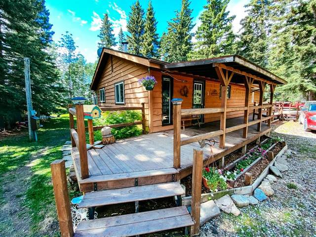 209 Eagle Ridge Avenue, Rural Clearwater County, AB T0M 0M0 (#A1119480) :: Calgary Homefinders