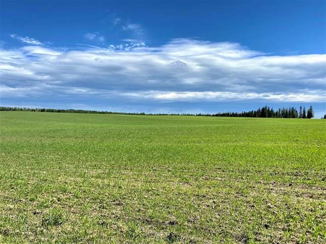 383039 Highway 752, Rural Clearwater County, AB T4T 2A1 (#A1119582) :: Greater Calgary Real Estate