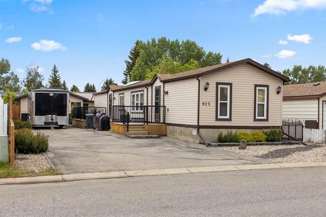 825 Briarwood Road, Strathmore, AB T1P 1E8 (#A1119907) :: Calgary Homefinders