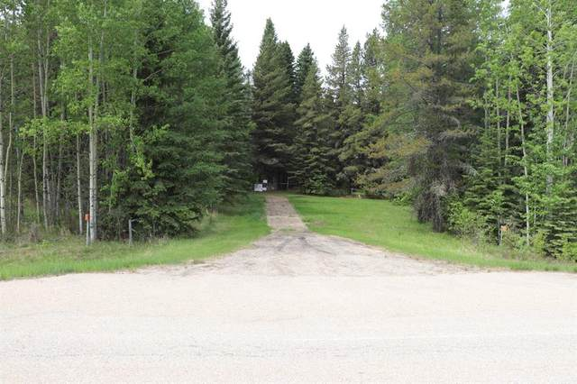00001 751 Highway, MacKay, AB T0E 1S0 (#A1121397) :: Calgary Homefinders