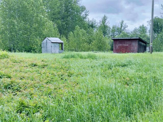 10219 Lot1 Hwy 2, Rural Big Lakes County, AB T0G 1K0 (#A1122091) :: Western Elite Real Estate Group