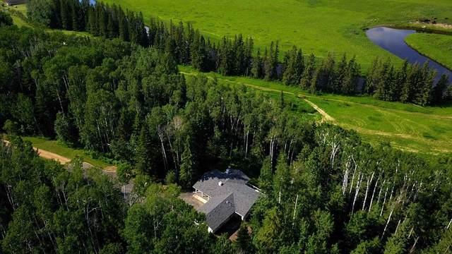 39200 Range Road 282 #100, Rural Red Deer County, AB T4S 2C4 (#A1124436) :: Calgary Homefinders