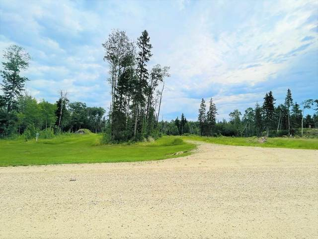 41214 Range Road 262 #2, Rural Lacombe County, AB T0C 1S0 (#A1126079) :: Calgary Homefinders
