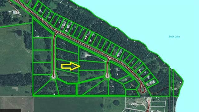 Lot 19 Buck Lake Estates, Rural Wetaskiwin County, AB T0C 0T0 (#A1129028) :: Calgary Homefinders