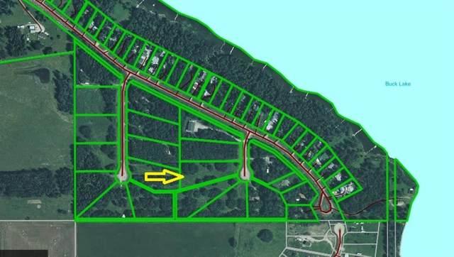 Lot 20 Buck Lake Estates, Rural Wetaskiwin County, AB T0C 0T0 (#A1129032) :: Calgary Homefinders