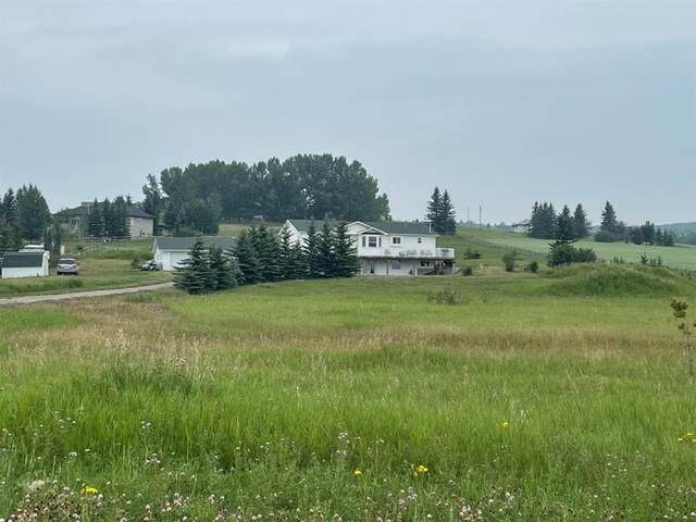 157017 179 Avenue W, Rural Foothills County, AB T1S 5H8 (#A1129420) :: Calgary Homefinders