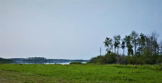 Range Road  43, Rural Clear Hills County, AB T0H 2A0 (#A1133950) :: Team Shillington | eXp Realty