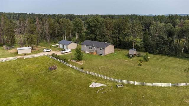 413037 Range Road 6-3, Rural Clearwater County, AB T4T 2A1 (#A1134116) :: Calgary Homefinders