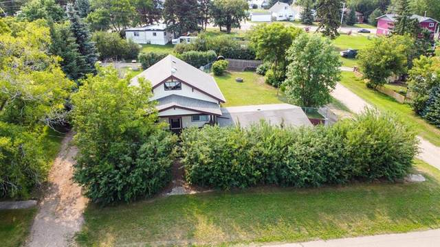 35 Selkirk Avenue, Hughenden, AB T0B 2E0 (#A1135677) :: Calgary Homefinders