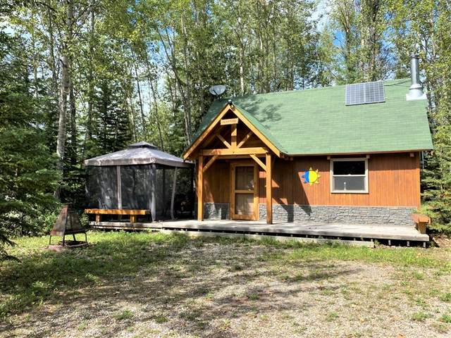 405002 Range Road 7-4, Rural Clearwater County, AB T4T 2A2 (#A1137784) :: Calgary Homefinders