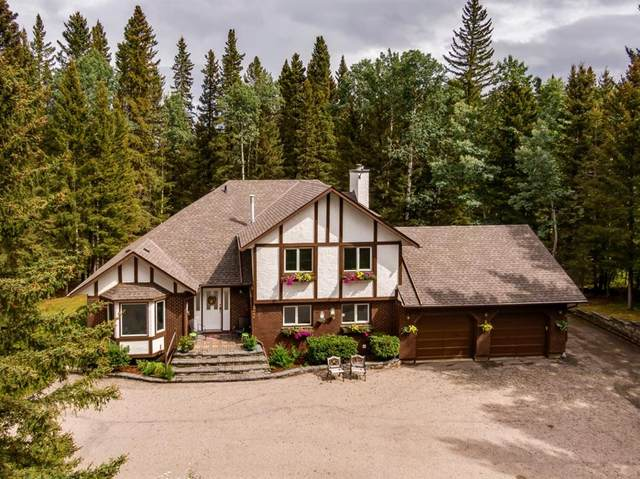 32 Mountain Lion Place, Bragg Creek, AB T0L 0K0 (#A1140573) :: Calgary Homefinders