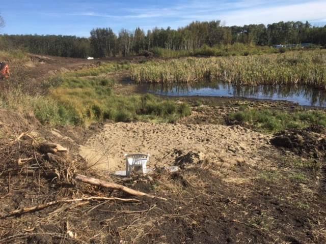 421 Fir Lane SE, Ferintosh, AB T0B 1M0 (#A1146668) :: Calgary Homefinders