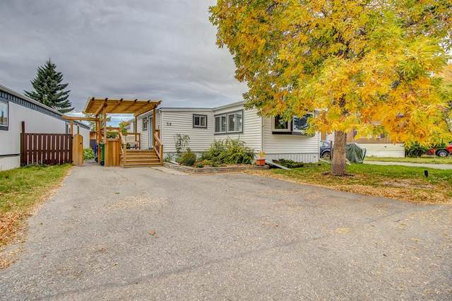 9090 24 Street SE #59, Calgary, AB T2C 2H4 (#A1147460) :: Calgary Homefinders