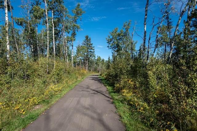 120 Burbank Road #10, Rural Lacombe County, AB T0M 0J0 (#A1148504) :: Calgary Homefinders
