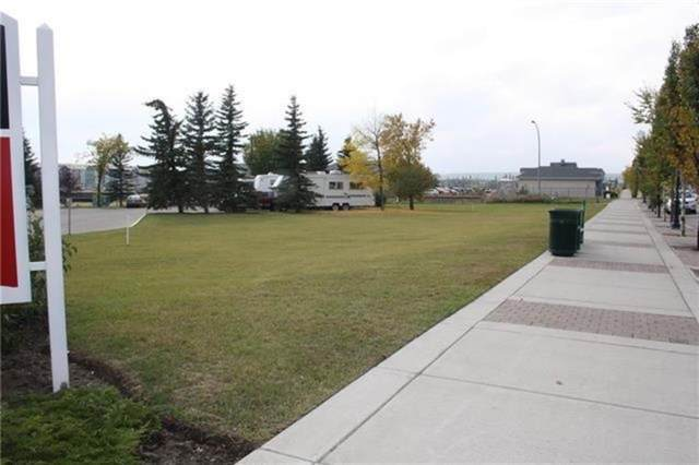 315 1 Avenue NW, Airdrie, AB T4B 2M9 (#A1149147) :: Calgary Homefinders