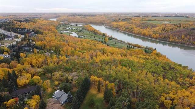 17303 23 Avenue NW, Edmonton, AB T6R 0T0 (#A1153359) :: Calgary Homefinders